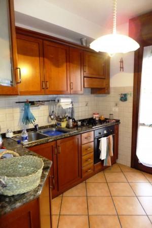 Appartamento in affitto a Roma, Tor Vergata, Arredato, 80 mq - Foto 18