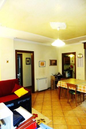 Appartamento in affitto a Roma, Tor Vergata, Arredato, 80 mq - Foto 7