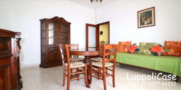 Appartamento in affitto a Siena, Arredato, 55 mq