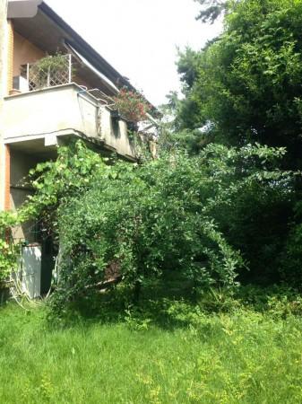 Casa indipendente in affitto a Gallarate, Con giardino, 200 mq - Foto 1