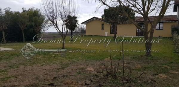 Villa in vendita a Dorno, Con giardino, 240 mq - Foto 11