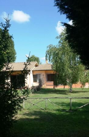 Villa in vendita a Sutri, Golf Nazionale, Con giardino, 355 mq