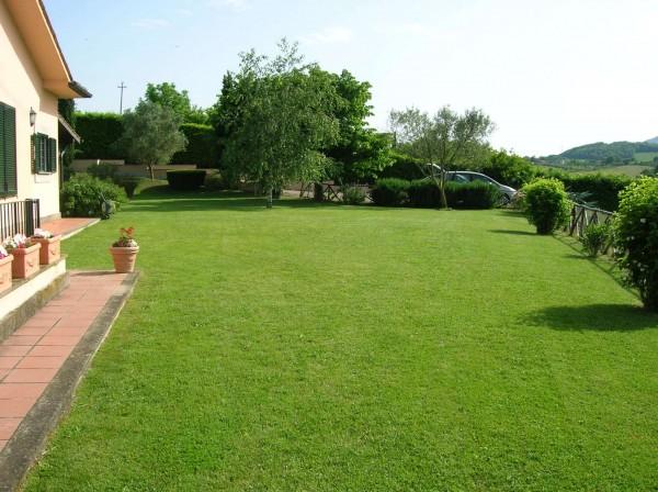 Villa in vendita a Sutri, Golf Nazionale, Con giardino, 355 mq - Foto 6