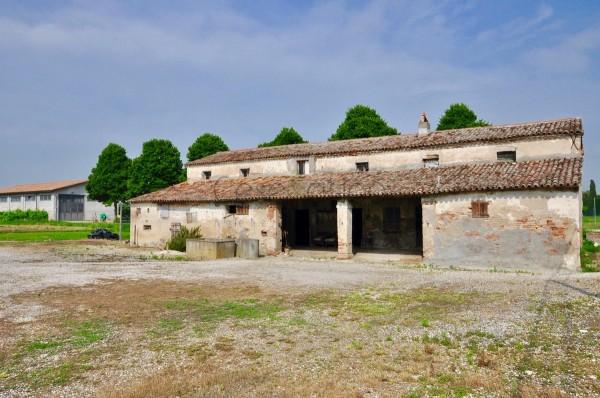 Locale Commerciale  in vendita a Cesenatico, Borella, 450 mq - Foto 6