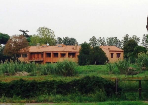 Villa in affitto a Roma, Torricola, Con giardino, 190 mq