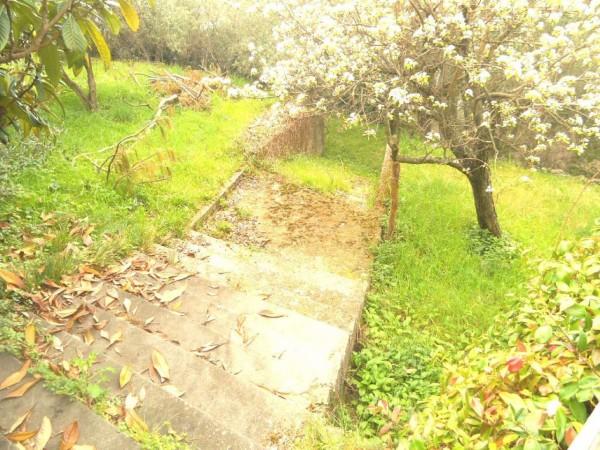 Appartamento in vendita a Zoagli, Sant'andrea Di Rovereto, Con giardino, 160 mq - Foto 7