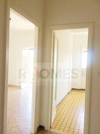 Appartamento in affitto a Roma, Tuscolana, 65 mq - Foto 9