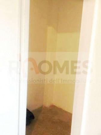 Appartamento in affitto a Roma, Tuscolana, 65 mq - Foto 7