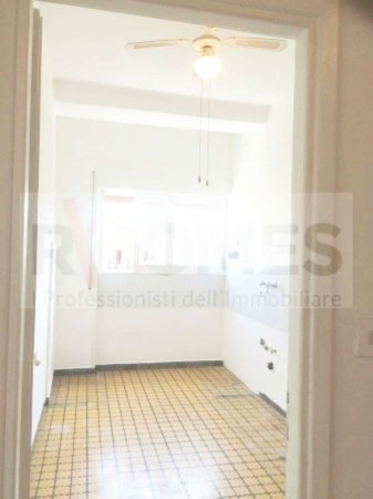 Appartamento in affitto a Roma, Tuscolana, 65 mq - Foto 14