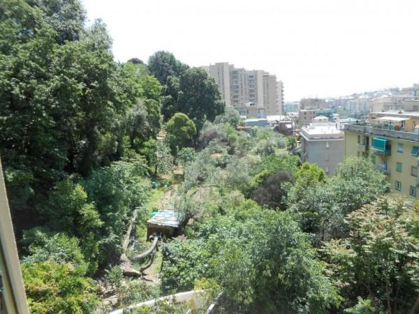 Appartamento in affitto a Genova, Adiacenze Monoblocco, Arredato, con giardino, 120 mq - Foto 5