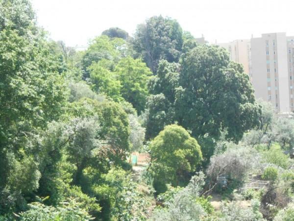 Appartamento in affitto a Genova, Adiacenze Monoblocco, Arredato, con giardino, 120 mq - Foto 7