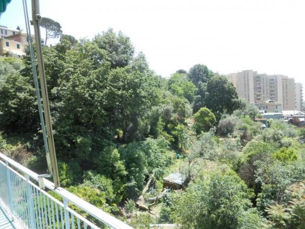 Appartamento in affitto a Genova, Adiacenze Monoblocco, Arredato, con giardino, 120 mq - Foto 11