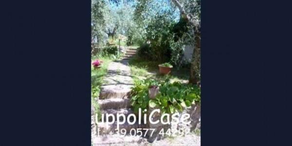 Villa in vendita a Murlo, Con giardino, 630 mq - Foto 1