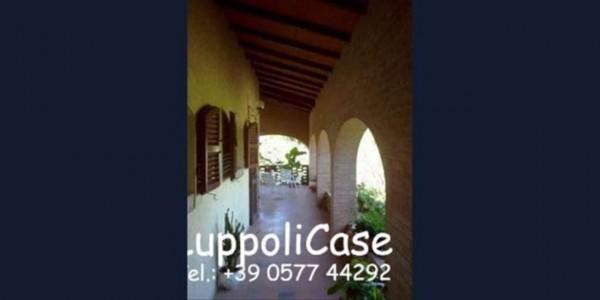 Villa in vendita a Murlo, Con giardino, 630 mq - Foto 7