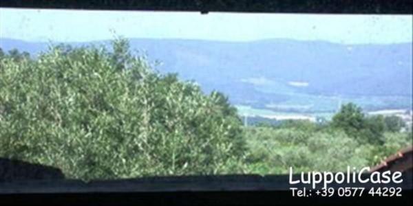 Villa in vendita a Murlo, Con giardino, 630 mq - Foto 11