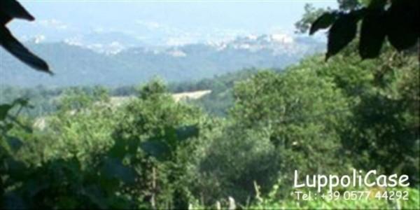 Villa in vendita a Murlo, Con giardino, 630 mq - Foto 2