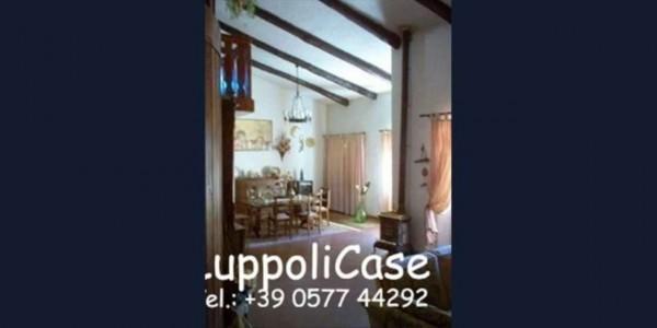Villa in vendita a Murlo, Con giardino, 630 mq - Foto 9