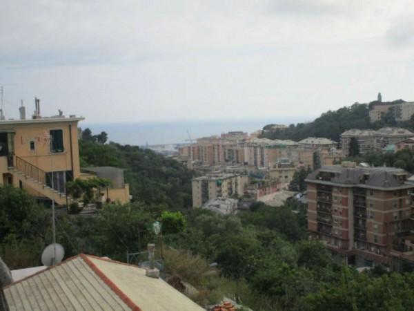 Appartamento in affitto a Genova, Belvedere, 90 mq - Foto 5