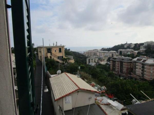 Appartamento in affitto a Genova, Belvedere, 90 mq - Foto 3