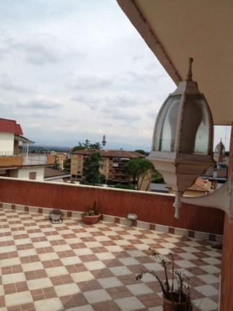 Appartamento in affitto a Roma, Ospedale San Pietro, Arredato, con giardino, 24 mq