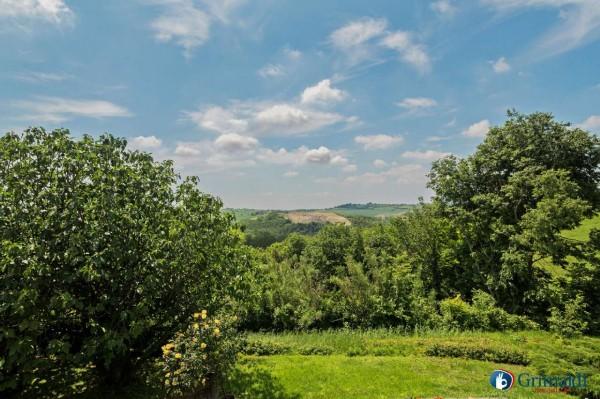 Appartamento in vendita a Olivola, Con giardino, 450 mq - Foto 42
