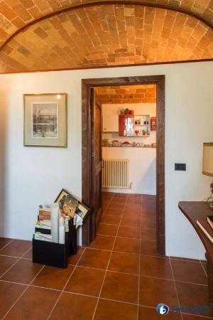 Appartamento in vendita a Olivola, Con giardino, 450 mq - Foto 7