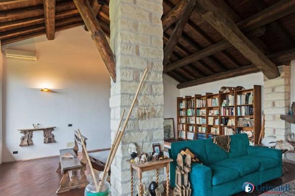 Appartamento in vendita a Olivola, Con giardino, 450 mq - Foto 11