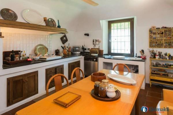 Appartamento in vendita a Olivola, Con giardino, 450 mq - Foto 28