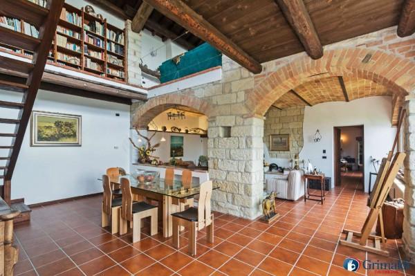 Appartamento in vendita a Olivola, Con giardino, 450 mq - Foto 35
