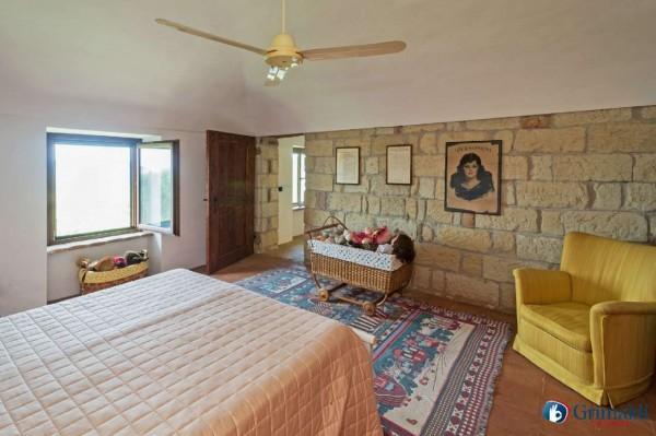 Appartamento in vendita a Olivola, Con giardino, 450 mq - Foto 30