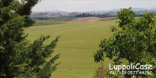 Villa in vendita a Siena, Con giardino, 250 mq - Foto 5