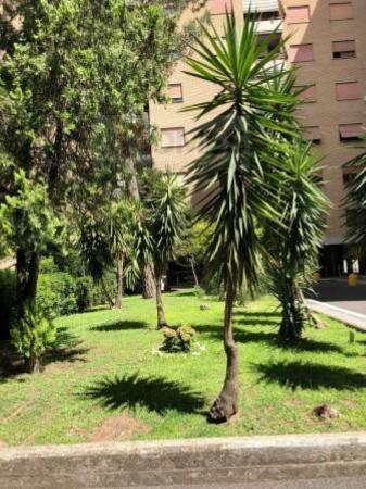 Appartamento in affitto a Roma, Cinecittà, Con giardino, 85 mq