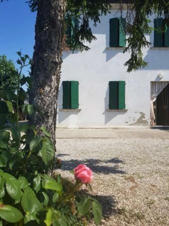 Appartamento in vendita a Padova, Terranegra, Con giardino, 130 mq