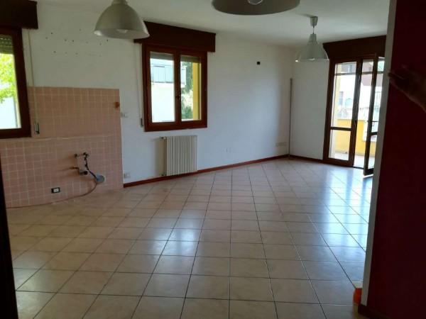 Appartamento in affitto a Bertinoro, Con giardino, 100 mq