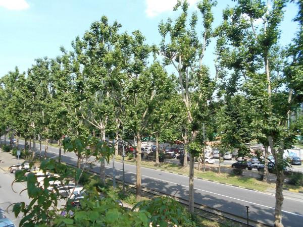 Appartamento in vendita a Torino, Santa Rita - Vicinanze Stadio Olimpico, Con giardino, 172 mq - Foto 7