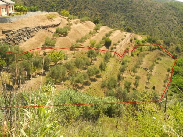 Villa in vendita a Sestri Levante, Riva Trigoso, Con giardino, 420 mq - Foto 30