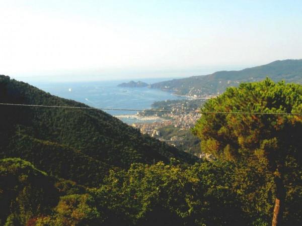 Rustico/Casale in vendita a Rapallo, Montallegro, Arredato, con giardino, 75 mq