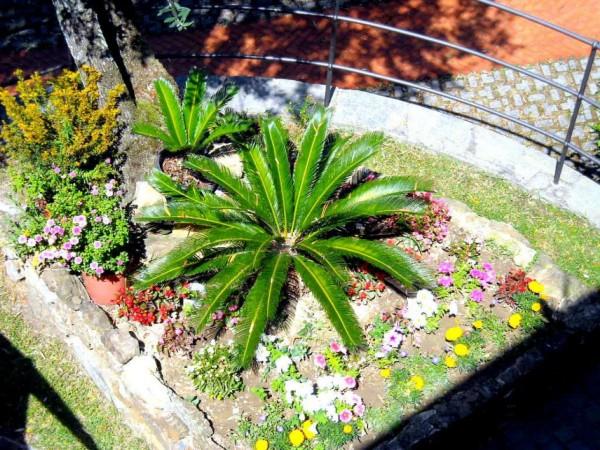 Villa in vendita a Recco, Liceto, Con giardino, 200 mq - Foto 29