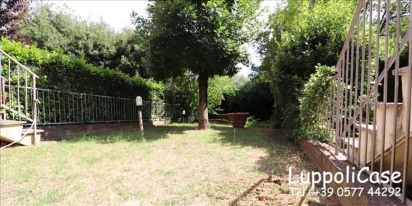Appartamento in vendita a Siena, Con giardino, 200 mq - Foto 13