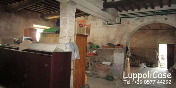 Appartamento in vendita a Castelnuovo Berardenga, Con giardino, 250 mq - Foto 1