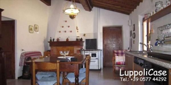 Appartamento in vendita a Castelnuovo Berardenga, Con giardino, 250 mq - Foto 10