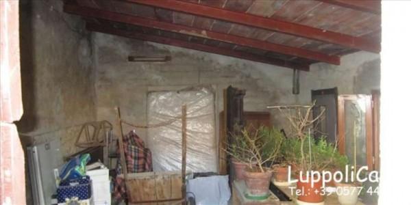 Appartamento in vendita a Castelnuovo Berardenga, Con giardino, 250 mq - Foto 3