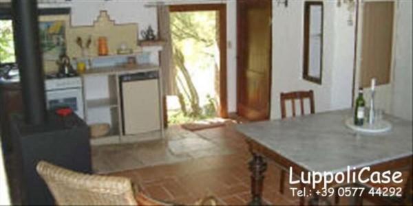 Villa in vendita a Chiusdino, Con giardino, 400 mq