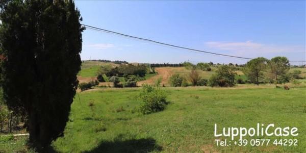 Villa in vendita a Siena, Con giardino, 251 mq