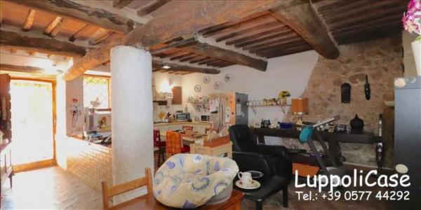 Villa in vendita a Sovicille, Con giardino, 300 mq