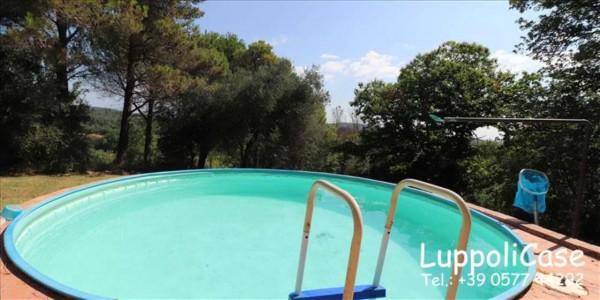Villa in vendita a Sovicille, Con giardino, 300 mq - Foto 2