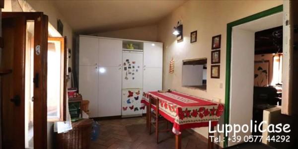 Villa in vendita a Sovicille, Con giardino, 300 mq - Foto 8