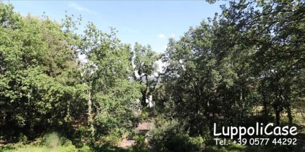 Villa in vendita a Monteriggioni, Con giardino, 212 mq - Foto 15