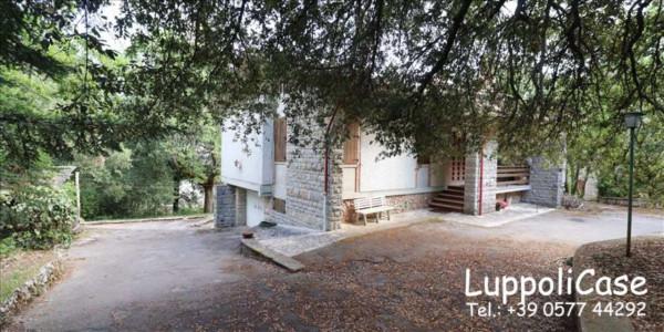 Villa in vendita a Monteriggioni, Con giardino, 212 mq