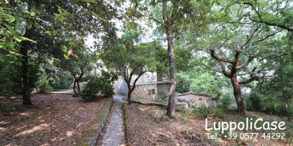 Villa in vendita a Monteriggioni, Con giardino, 212 mq - Foto 5